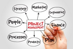 projectmanagement250